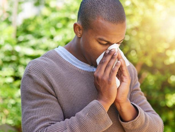 Dust allergy treatment in ayurveda
