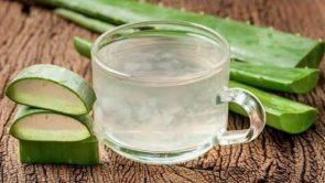 Aloe vera gel kaise lagaya jata hai : एलोवेरा जेल लगाने का तरीका।