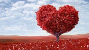 वैलेंटाइन डे वीक – Valentine week in hindi.