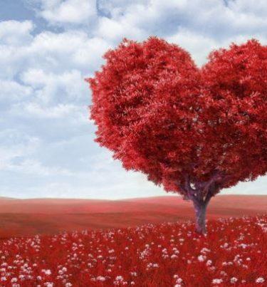 वैलेंटाइन गिफ्ट आइडिया – Valentine gift ideas in hindi.