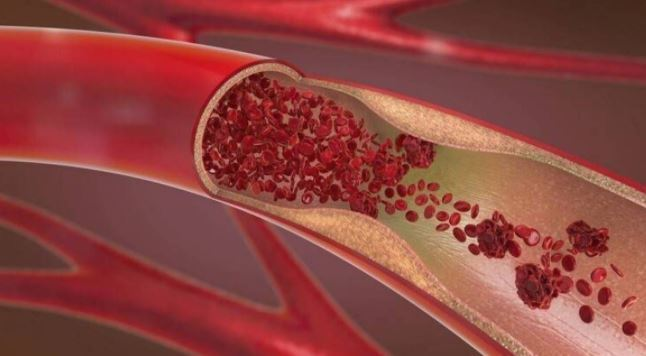 श्वेत रक्त कोशिकाओं