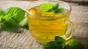 Mint water benefits in hindi : पुदीने का पानी पीने के फायदे।