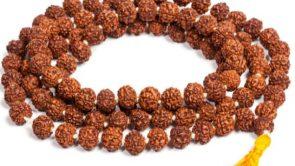 5 mukhi rudraksha pahnane ke fayde : 5 मुखी रुद्राक्ष पहनने के फायदे।